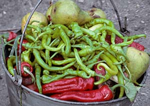 Fresh peppars at Sioni Ateni